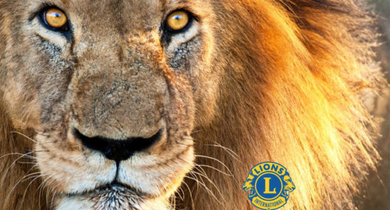 lionsclub.co